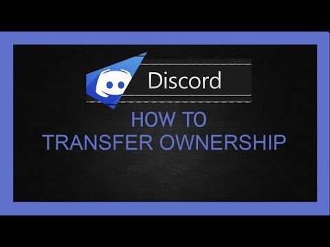 Transfer discord server owner